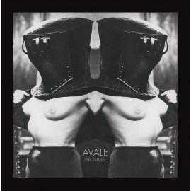AVALE : LP Incisives