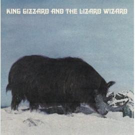 KING GIZZARD AND THE LIZARD WIZARD : LP Polygondwanaland ( Fuzz Club Records)