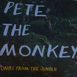 VARIOUS : LPx2 Pete The Monkey