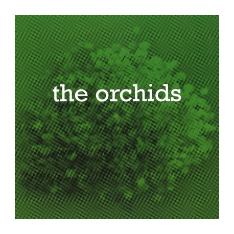 ORCHIDS (the) : I Never Learn