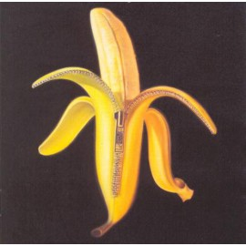 2nd HAND / OCCAS : DANDY WARHOLS (the) : CD Welcome To The Monkey House