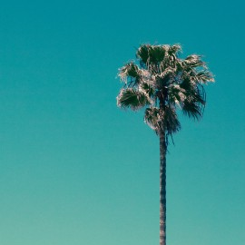 """SOFT RIDER (the) : 12""""EP The Pool"""