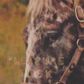 SPIRIT OF THE BEEHIVE (the) : LP Pleasure Suck