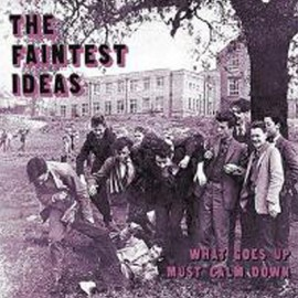 FAINTEST IDEAS (the) : CD What Goes Up Must Calm Down