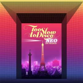 VARIOUS : LPx2 Too Slow To Disco - Neo En France