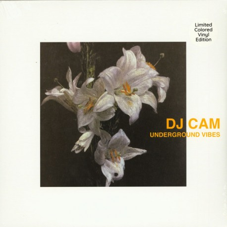 DJ CAM : LP Underground Vibes (colored)
