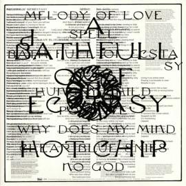 HOT CHIP : LPx2 A Bath Full Of Ecstasy (ltd)