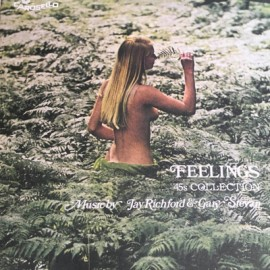 "RICHFORD Jay & STEVAN Gary : 7""EPx2 Feelings"