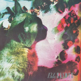 PALE SAINTS : LP The Comforts Of Madness 30th Anniversary Re:Masters
