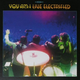 YOU AM I : LPx3+DVD Live Electrified
