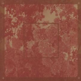 GIRL IN RED : LP Beginnings