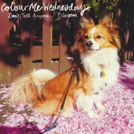 COLOUR ME WEDNESDAY : Don't Tell Anyone