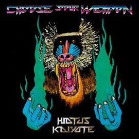 HIATUS KAIYOTE : LPx2 Choose Your Weapon