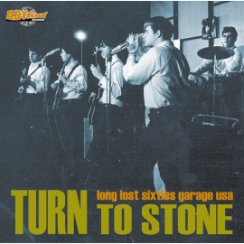 VARIOUS : LP Turn To Stone (Long Lost Sixties Garage USA)