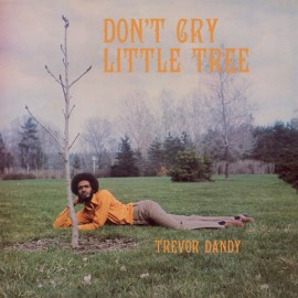 DANDY Trevor : LP Don't Cry Little Tree