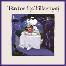 STEVENS Cat : LP Tea for The Tillerman 2