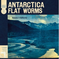 FLAT WORMS : CD Antarctica
