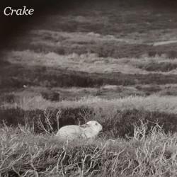 CRAKE : Enough Salt (For All Dogs)