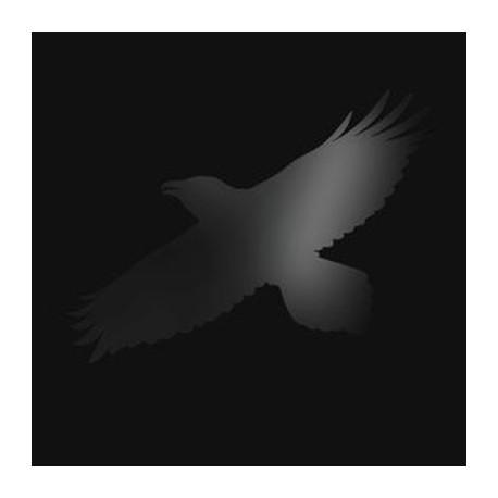 SIGUR ROS : LPx2 Odin's Raven Magic