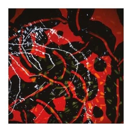 BRIAN ENO : LPx2 Nerve Net