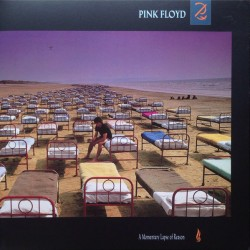 PINK FLOYD : LP A Momentary Lapse Of Reason