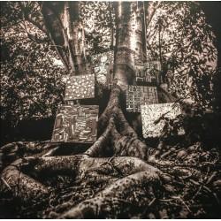 WASHINGTON Kamasi : LP Harmony Of Difference