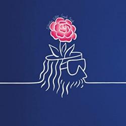 SEBASTIEN TELLIER : LP Simple Mind