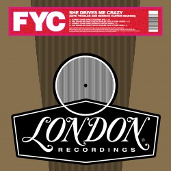 "FINE YOUNG CANNIBALS : 12""EP She Drives Me Crazy (Derrick Carter And Seth Troxler Remixes)"
