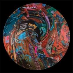 BLACK MIDI : LP Picture Cavalcade