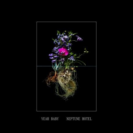 YEAH BABY : LP Neptune Hotel