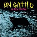 LA BIEN QUERIDA : Un Gatito