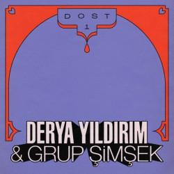 DERYA YILDIRIM & GRUP SIMSEK : LP Dost 1