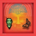 CHAMELEONS (the) : LPx2 John Peel Sessions