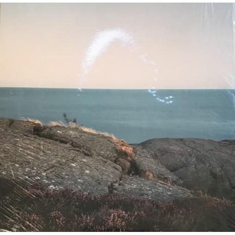 JENKINS Cassandra : LP An Overview On Phenomenal Nature