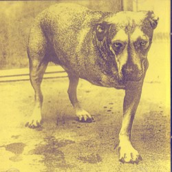 2nd HAND / OCCAS ALICE IN CHAINS : CD Alice In Chains