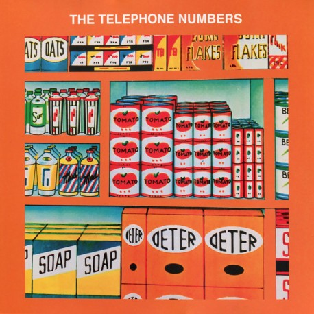 TELEPHONE NUMBERS (the) : LP The Ballad Of Doug
