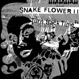 SNAKE FLOWER II : Turn Back Time 7""