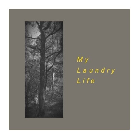 MY LAUNDRY LIFE : The Art Of Science