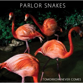 "PARLOR SNAKES : MP3 7"" Tomorrow Never Comes"
