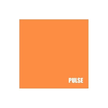 PULSE : Marco Galardi