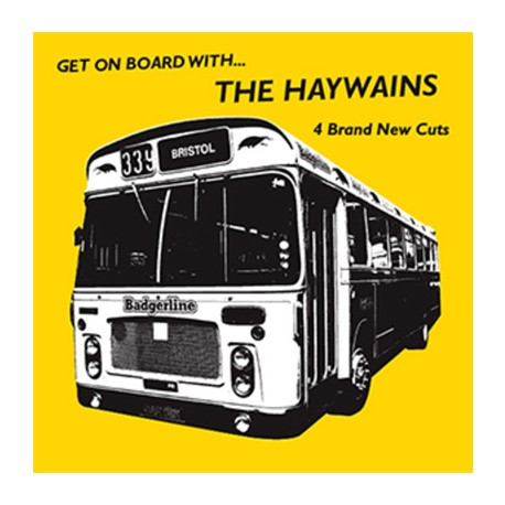HAYWAINS (the) : It's Time We Stopped Pretending