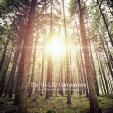 HI-LIFE COMPANION (the) : CD Our Years In The Wilderness