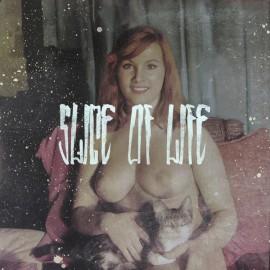 SLICE OF LIFE : LP Slice Of Life