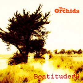 ORCHIDS (the) : CD Beatitude 9