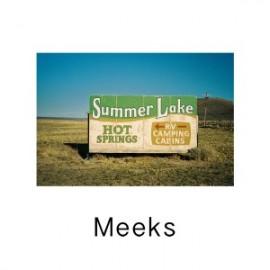 MEEKS : CDEP Meeks