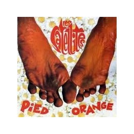 LES SATELLITES : LP Pied Orange